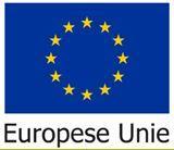 Flag EU Europese Unie
